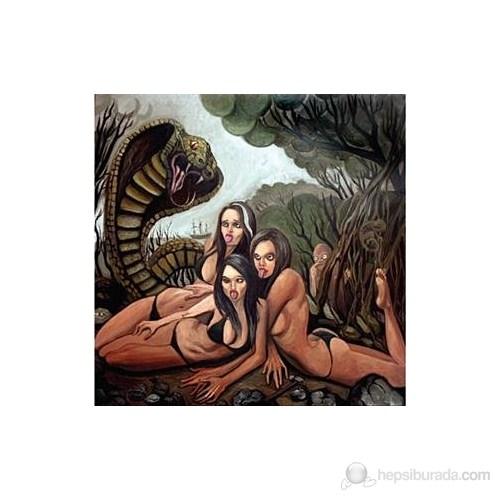 Lımp Bızkıt - Gold Cobra