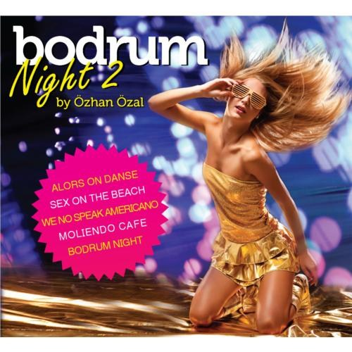 Bodrum Night-2