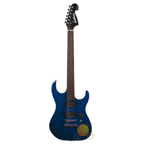 Washburn X200 Pro Tbk Seymour Duncan Manyetikli Transparan Siyah Elektro Gitar