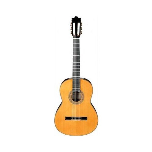 Ibanez G Serisi G-850 Nt Klasik Gitar