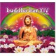 Buddha Bar Vol.14 by Ravin