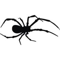 Örümcek Çıkartması Siyah 21Cmx9Cm