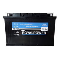 Royalpower Jel Akü 100Ah