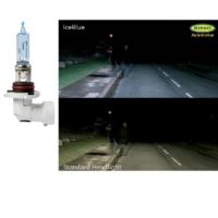 Ring HB3 9005 IceBlue Ampul 12V 60W