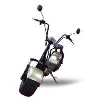 Quality Motors Elektrikli Scooter - Metalik Gold Gri - E Scooter