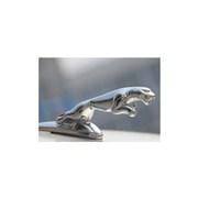 Schwer Jaguar Kaput Arması 9661