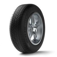 Michelin Bfg 245/45 R17 99V Xl G-Force Win Go Kiş Oto Lastiği