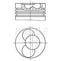 Mahle 0308800 Motor Piston Segman (Std) Vw-T5 2.5 Tdı Avr Volt A-6 Lt 35 (Adet) (81.01)