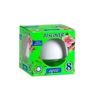 Discover Minisphere Dekoratif Egzotik Oto Kokusu 3423a