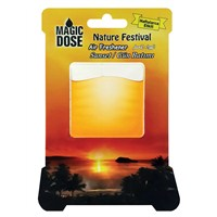 "Nature Festıval ""Sunset/Gün Batımı"""