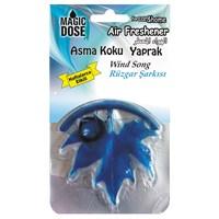 """Asma Koku Yaprak """"Wınd Song"""" Rüzgar Şarkısı"""