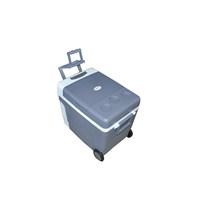 Oto Buzdolabı AC/DC LY0533A