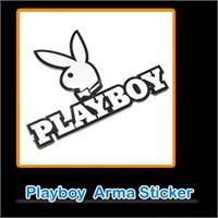AutoCet Playboy 3D Arma   2049