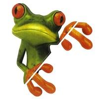 Csı 3 Boyutlu (3D) Sevimli Kurbağa Araç Sticker