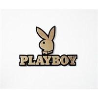Z tech Playboy yazısı 3D görünümlü sticker 10x6,5cm