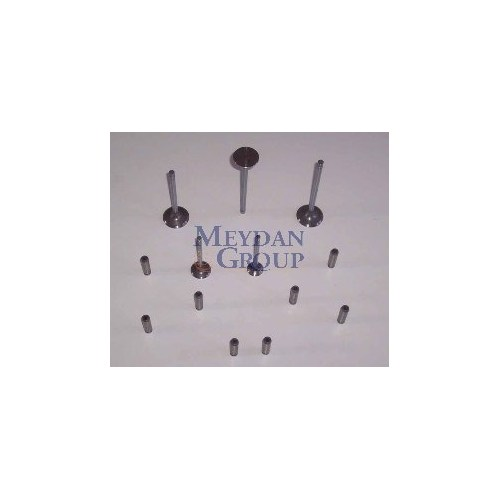 Nıssan Sunny- B13- 90/94 Emme Supapı 1.6Cc