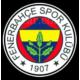 Boostzone Fenerbahçe Kapı Altı Işıklı Logo