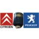 Peugeot 106 Citroen Saxo Xsara Yakıt Filtresi 190642 WK821