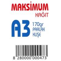 Maksimum A3 Kuşe Kağıt Gramajlı Parlak 170 Gr. 250 Adet