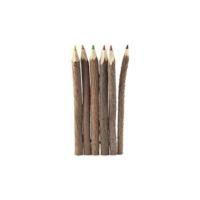 Kıkkerland Boya Kalemi - Ağaç