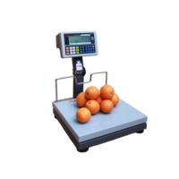 Arester RF-LCD 35x40 150 Kg Katlanır Boyunlu Pazarcı Baskülü