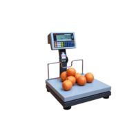 Arester RF-LCD 40x40 150 Kg Katlanır Boyunlu Pazarcı Baskülü
