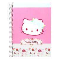 Hello Kitty Kareli Separatörlü Defter 19 x 26 120 Yaprak