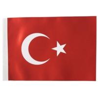 İnterpano Bayrak 20 x 30 Cm 10'lu