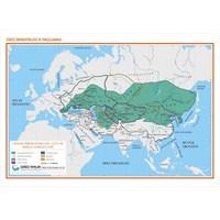 Cengiz İmparatorluğu Ve Parçalanması Haritası