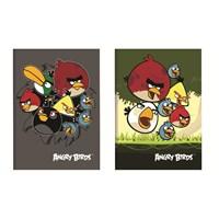 Keskin Angry Birds Tel Dikişli A5 Okul Defteri 56 Yaprak Kareli