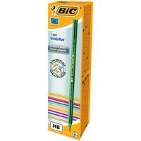 Bic Evolution 646 Kurşun Kalem 12'li Kutu