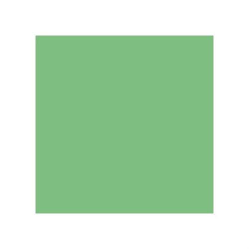 Stylefile Vivid Green 652