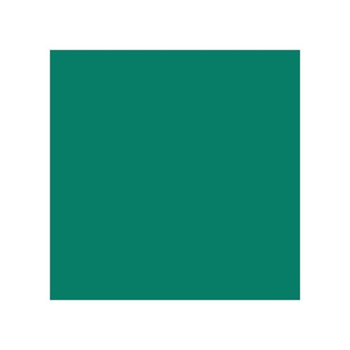 Stylefile Turquoise Green 646