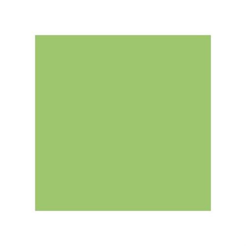 Stylefile Grass Green 672