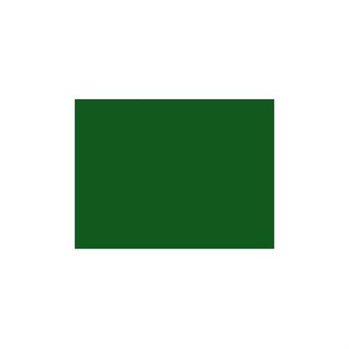 Faber-Castell 167667 Pitt Artist Pen Bıg Brush Green Olıve