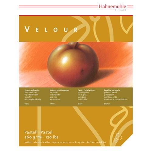 Hahnemühle Pastel İçin Velour Kağıtlar - Blok 260 Gsm 36X48 Cm 10 Beyaz Renkte 36 X 48 - 10 628 613