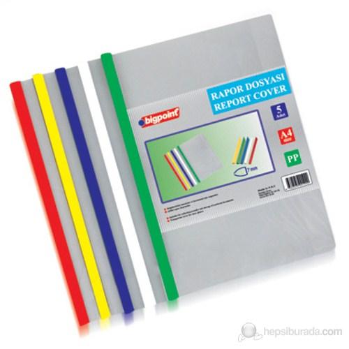 Bigpoint Rapor Dosyası A4 5 Renk Karışık Set (276)