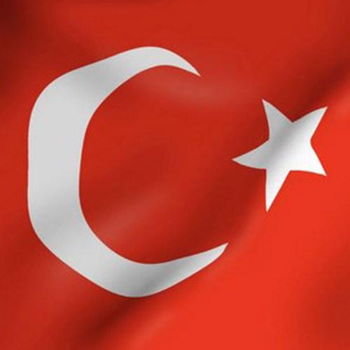 Us Bayrak Türk Bayrağı 30X45 Cm