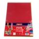 Bigpoint Eva 20 x 30 Karışık 10 Renk