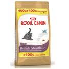 Royal Canin Fbn British Shorthair 400+400 gr Irka Özel Yavru Kedi Maması