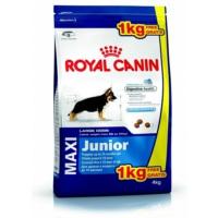 Royal Canin Maxi Junior Büyük Irk Yavru Kuru Köpek Maması 4K+1K