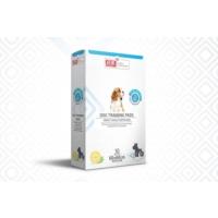 Flip Köpek Tuvalet Eğitim Pedi 60*60 10Lu Kutu