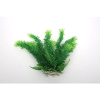 Natural Coral Akvaryum Dekor Plastik Bitki 25 Cm