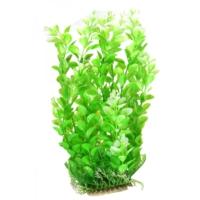 Natural Coral 094354 Plastik Bitki 35 Cm