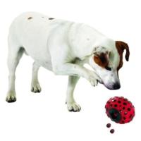 Karlie Ödül Topu Köpek Oyuncağı 16,5 Cm