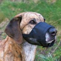 Trixie Köpek Fileli Ağızlık S , 13-16Cm