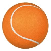 Trixie Tenis Topu Köpek Oyuncağı 22 Cm