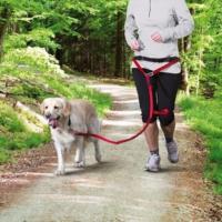 Trixie Köpek Kolay Yürüme Koşma Ve Gezdirme Tasması Seti