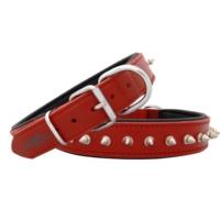 Doggie Comfort Çivili Deri Boyun Tasması - 25 -40 Kg Arası Köpekler İçin