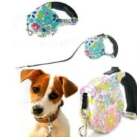 Pup Style Desenli Köpek Gezdirme Tasması